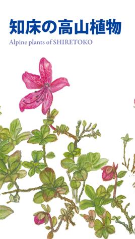 学習4 知床の高山植物(新板) 表紙